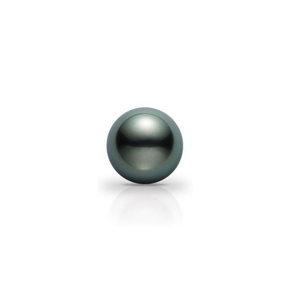 南洋黑珍珠